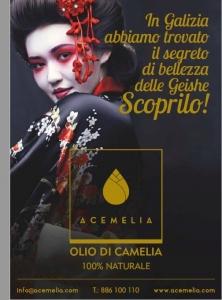 olio di camelia brochure ita front